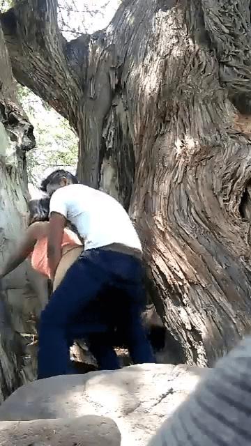 Tamil outdoor sex avasaramaaga cow nilaiyil oothu kanju edukum videos